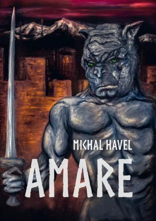 Amare - Havel Michal [E-kniha]